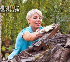Frau stapelt Kaminholz um Kaminholzunterstand selber bauen zu können